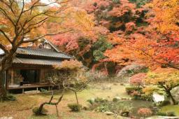 Sesshu's Autumn Leaves Festival at Gyorakuen Garden